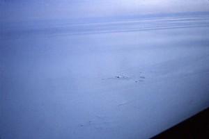 South Pole (51)